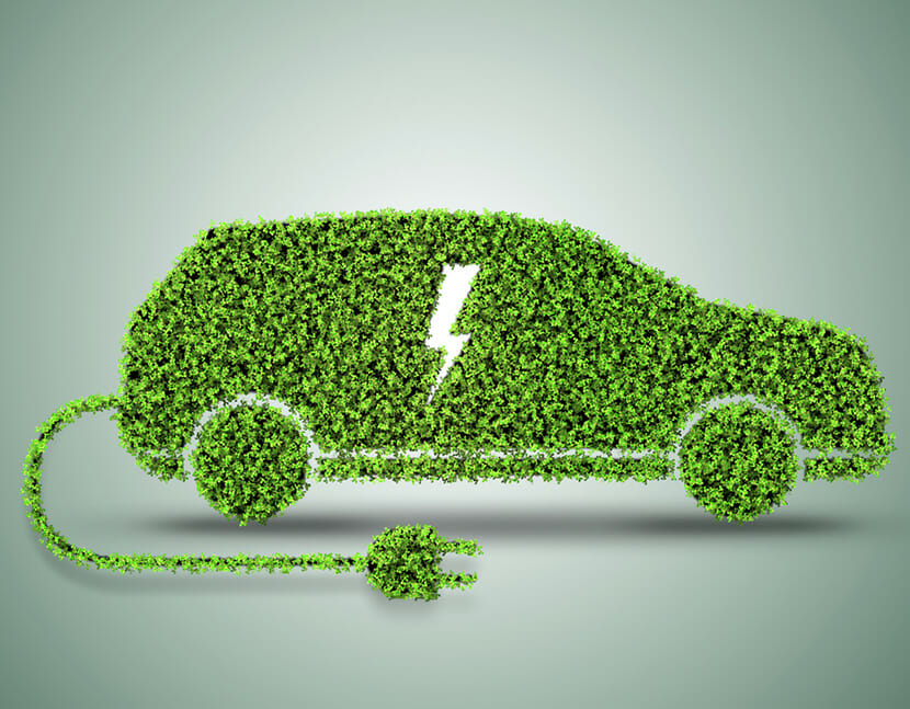 Electric car covered with leaves